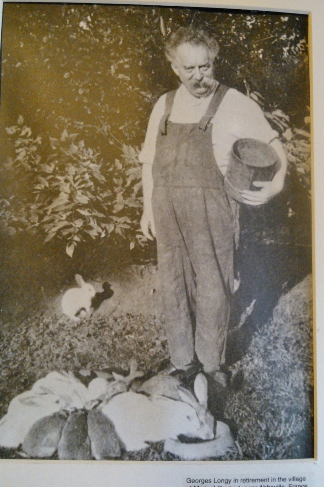 in his retirement, Mr. Longy pictured with his rabbits